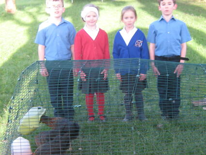 Regan, April, Reyhan, Brandyn with chickens