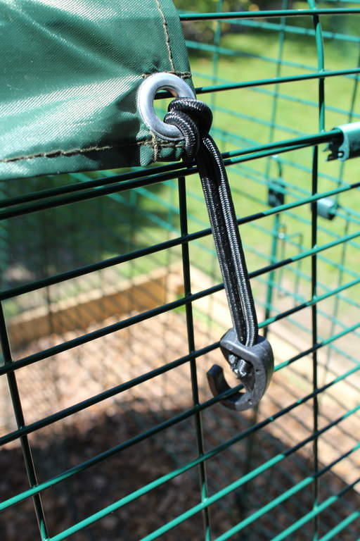 Bungee hooks pack of 6 outdoor walk in run weather protection bungee hooks pack of 6 outdoor walk in run weather protection chicken coops and pet chicken accessories omlet fandeluxe Gallery