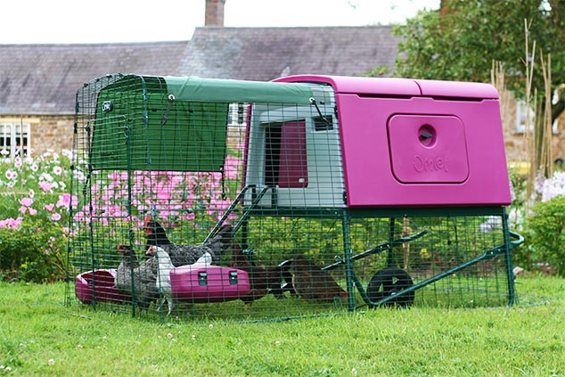 The Eglu Cube chicken house in a garden.