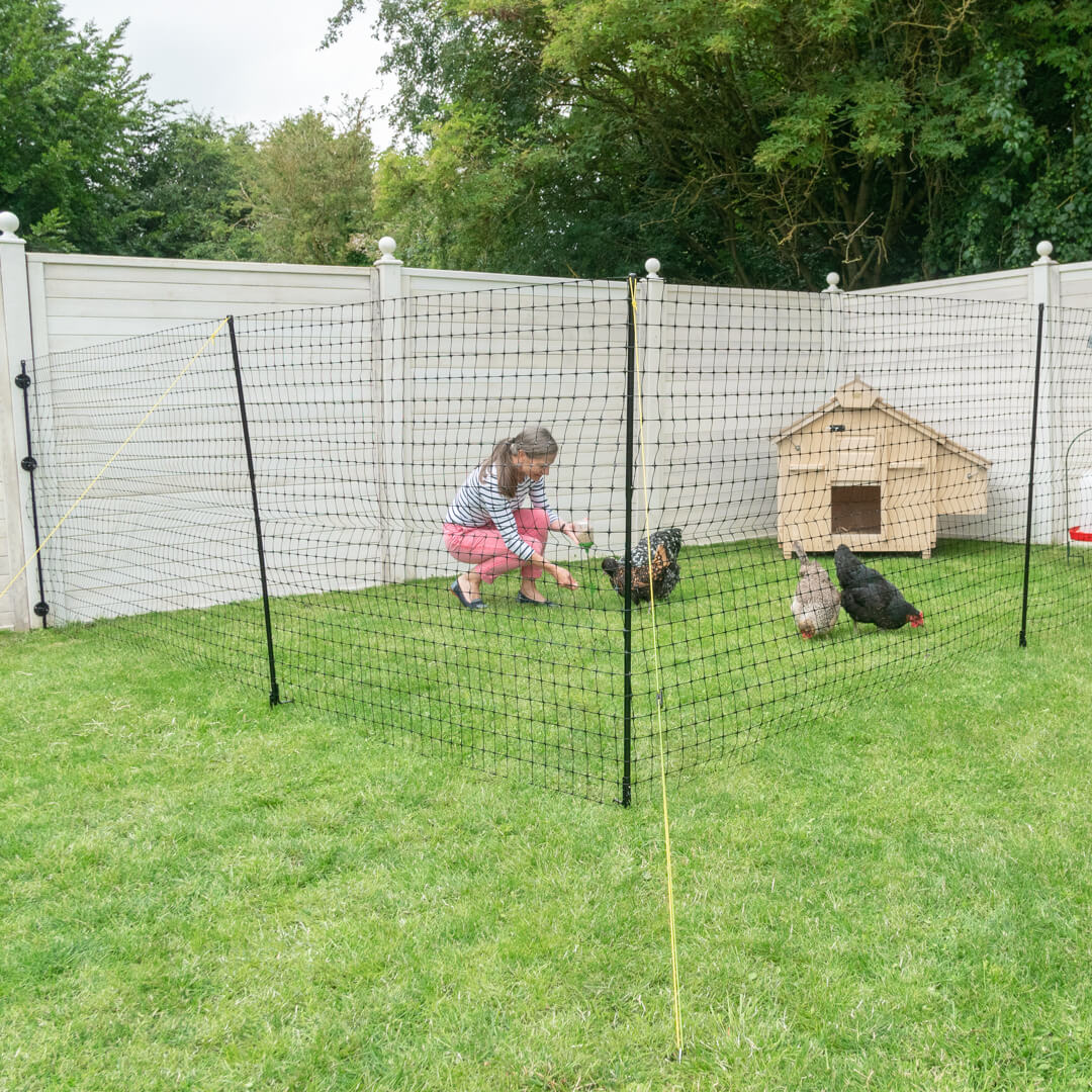 Picture of: Omlet Chicken Fencing Poultry Netting For Chickens
