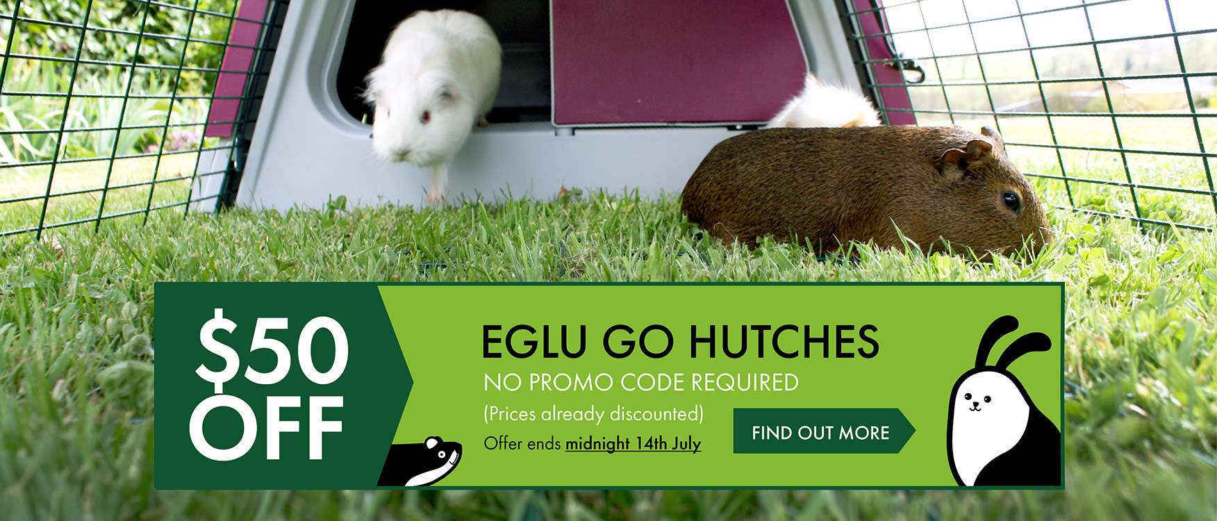 $50 off Eglu Go Hutch