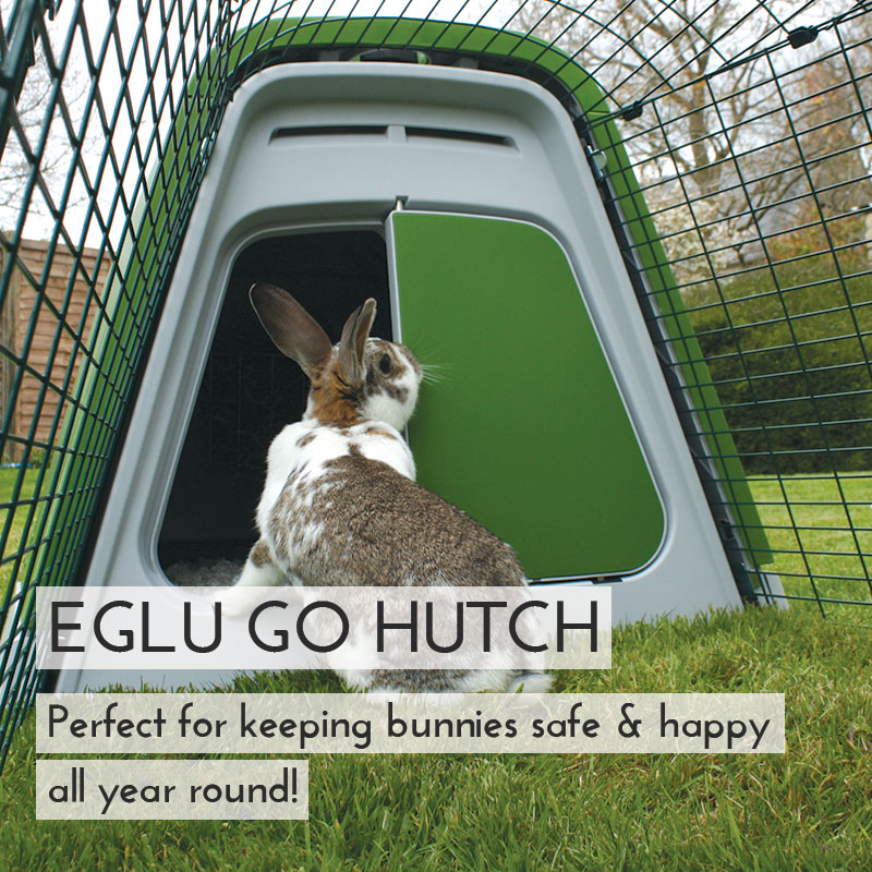 Main Eglu Go Rabbit Hutch Mobile AU