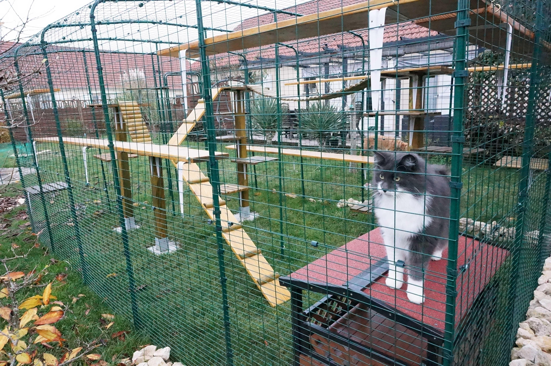omlet cat enclosure outdoor cat run large spacious