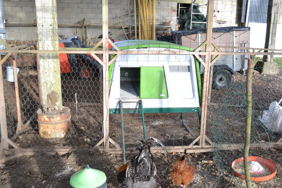 new eglu cube chicken coop chicken keeping equipment omlet. Black Bedroom Furniture Sets. Home Design Ideas